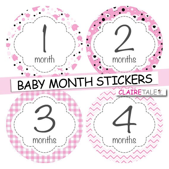 Baby girl month stickers pink elephants INSTANT DOWNLOAD stickers / monthly stickers baby shower gift