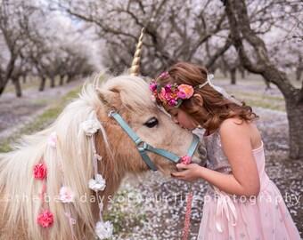 ecc0002bdcc Unicorn Horn for Horse