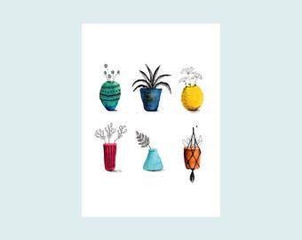 House plants, illustrated card, postcard