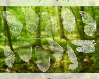 11 Fairy Wings Photoshop BRUSHES SET 1 including a Tinker Bell wing, Butterfly wings and a Dragonfly wing