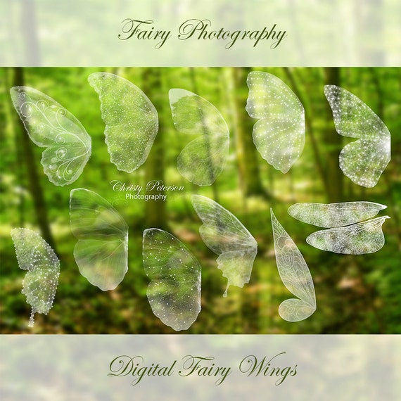 11 Fairy Wings Photoshop BRUSHES SET 1 Including A Tinker Bell Etsy