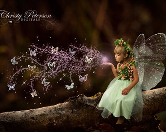 Branch in a Forest Digital Background for Fairy Photography Composites