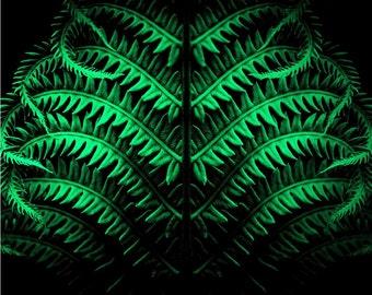 Green Botanical Art Digital Download • Printable Photography Large Wall Art