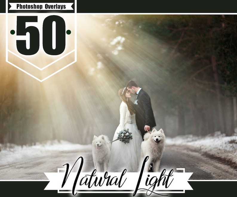 50 natural sun light overlays, photoshop overlay, sun beams and streaks,  sun flare overlay wedding baby photo, realistic effect, PNG files