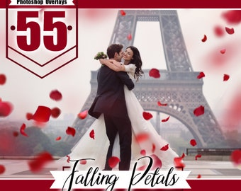 55  Falling Petals Photo Overlays, photoshop overlays, valentine overlays, red rose petals, rose overlays, fluttering petals, png file