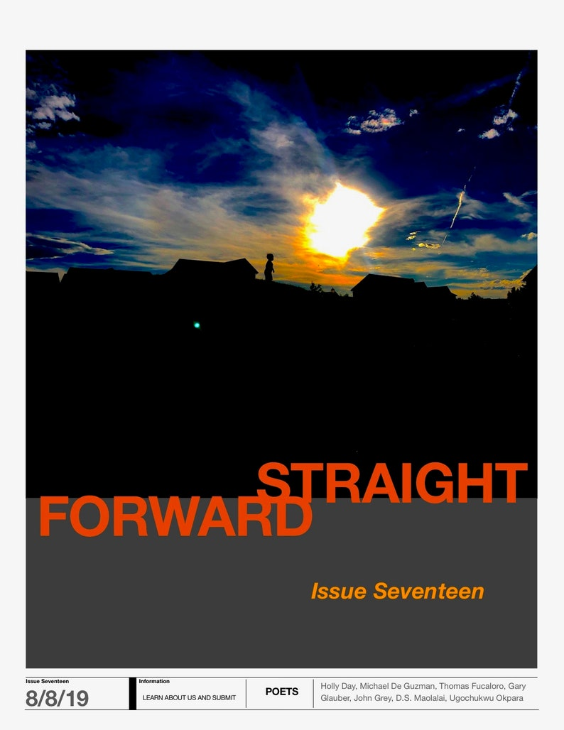 Issue Seventeen image 0
