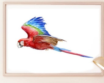 Flying Scarlet Macaw painting, red parrot watercolor, fine art print, red blue wall art, Macaw canvas print, watercolor illustration