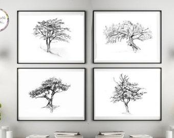 Tree art, Set of 4 tree drawings, giclee prints, tree wall Art, tree sketch, grey white art, Michelle Dujardin, Zen drawing, illustrtation