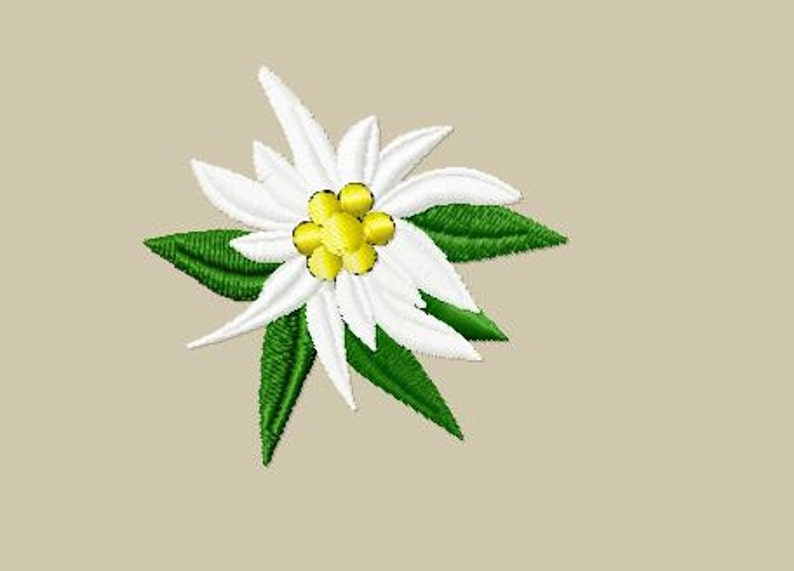 Embroidery pattern  Edelweiss image 0