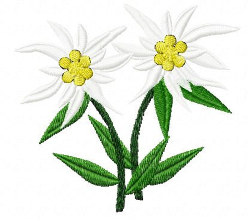 Embroidery pattern  Pair of Edelweiss2 image 0
