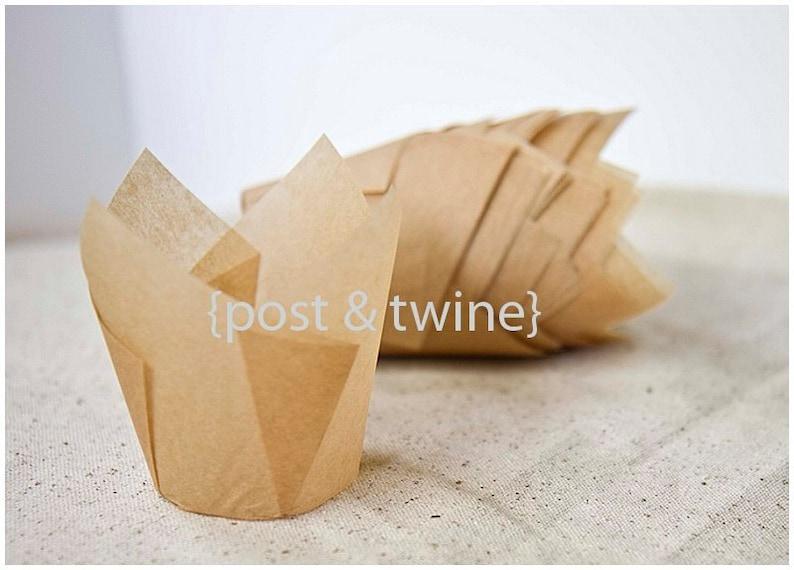 24 Tan Tulip Baking Cups  Standard Size image 0