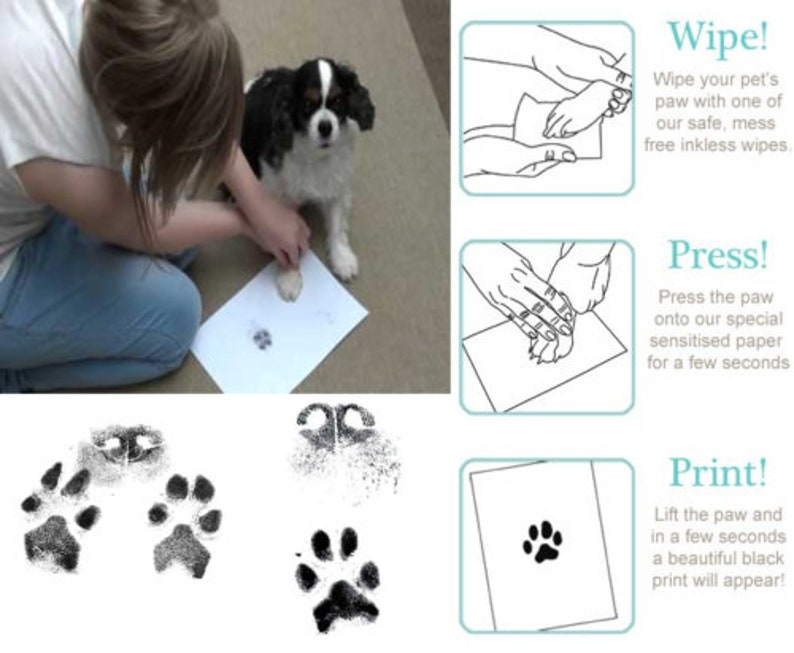 Pawfection Inkless Paw Print Kit - Cats, Dogs, Hamsters, Birds & so on