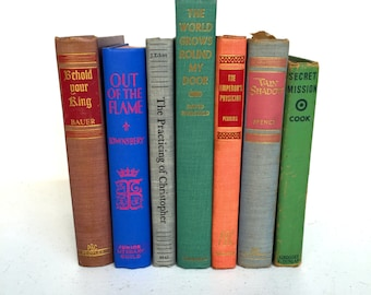 Vintage Set of Colorful Books, Decorate