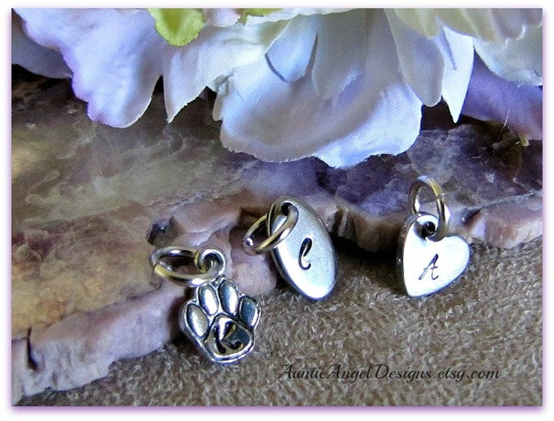 Add-on stainless steel or pewter monogram tag to add to your image 0