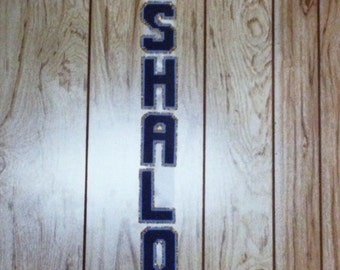 Shalom Wall Hanging in Plastic Canvas