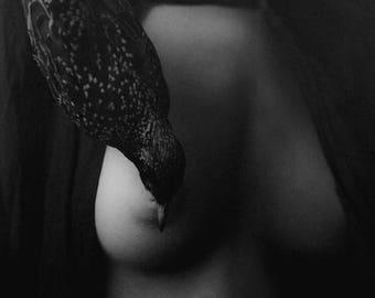 SALE Portrait,Fine Art Photography.Figure Photograph,Black&White Portrait,Monochromatic