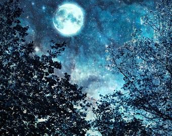 Nature photography, Blue Moon, Night sky, Stars, Trees, Wall Art, Home Decor.