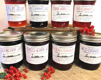 Wild Crafted Jelly - Choose from 8 Wilderness Berry Flavors including Chokecherry, Elderberry and more - 8 oz jars - Boondock Enterprises