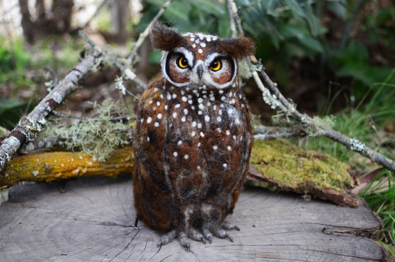 Spotted Owl - by Harthicune