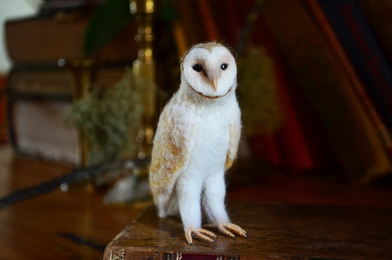 White Barn Owl - by Harthicune