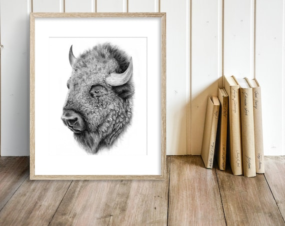 Bison Charcoal Drawing GICLEE Art Print , Buffalo , Wall Decor , Black and  White Wall Art , For Him , Prairies , Canadian Wildlife , Alberta
