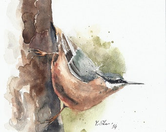 "SALE 50% Was 57.00 Original watercolor painitng art bird, nuthatch, handmade, 8x8"""