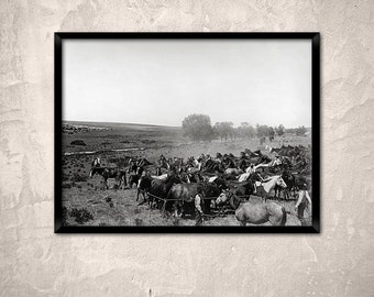 Cowboy Decor.The Remuda, Changing Horses, 1904.Vintage Cowboys Photo.Horse  Wrangler.Old West Ranch Print.