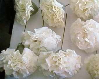 Single Stemmed carnations