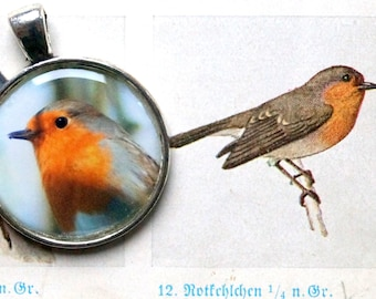 Robins Robin Pendant