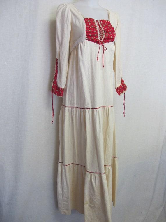 Prairie Dress Steampunk Dress  1960s Hippie Dress… - image 1