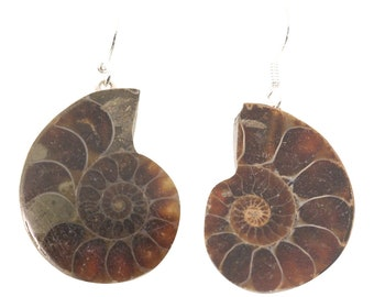Ammonite Shepard's Hook Earrings