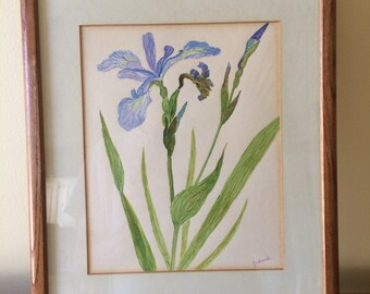 Vintage Iris Watercolor by J A Lesnak Framed and Matted 12 x 15