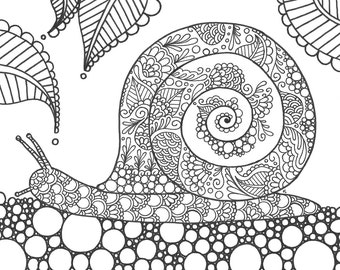 Snail Coloring Page Etsy