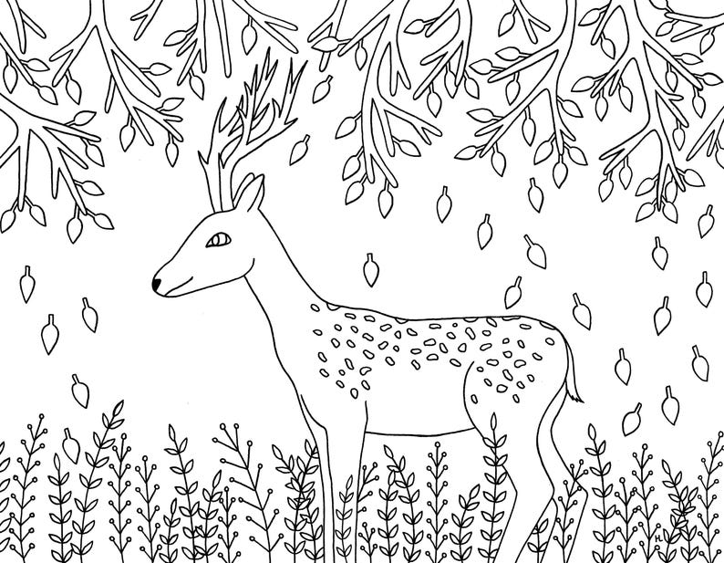 Paquete De 5 Animales Del Bosque Para Colorear Páginas Etsy