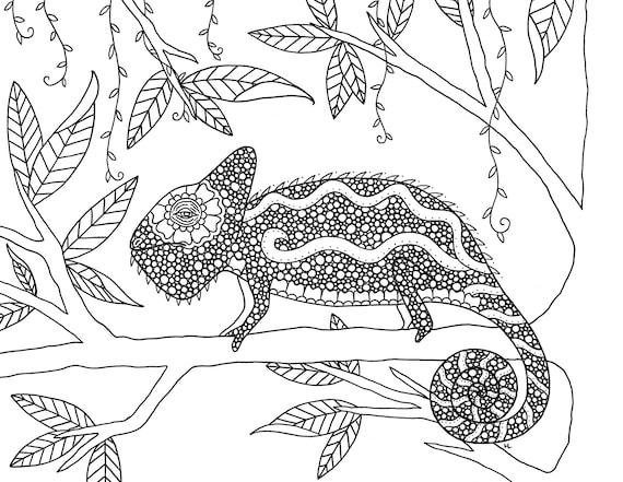 Paquete de 5 animales de la selva colorear descarga Digital   Etsy