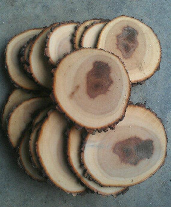 500 4 5 Rustic Wood Tree Slices Wedding Decor Sourwood Disc Log Round Large