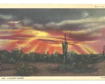 A Desert Sunset   1940's Postcard