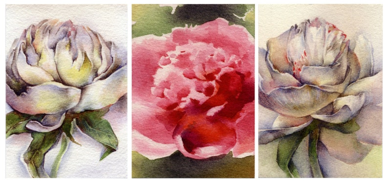 Watercolor painting print 3x tulip flower painting ACEO Artist Trading Card