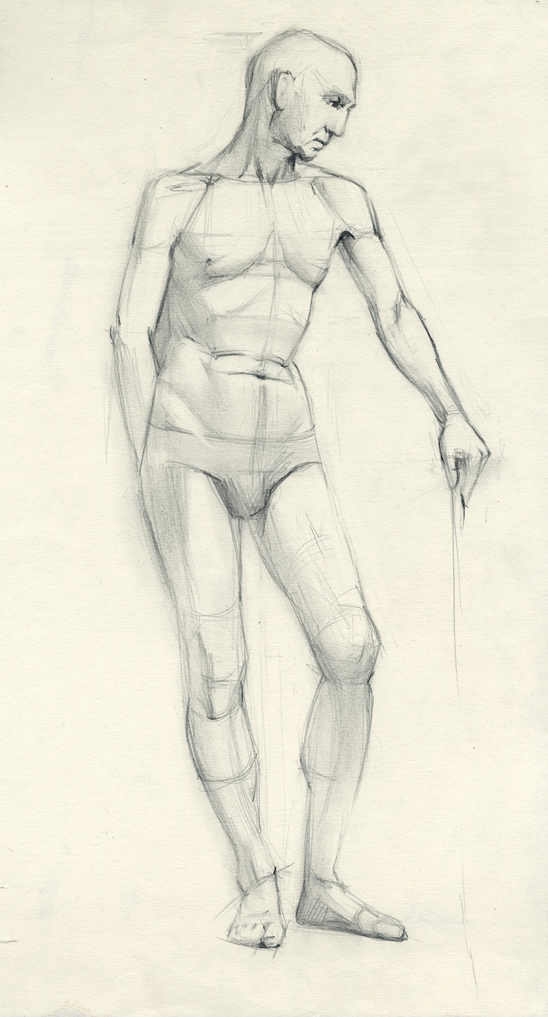 Man model drawing male model pencil drawing academical study drawing paper