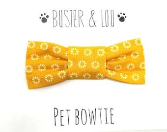 Cat Bow Tie  - Mustard yellow Metro