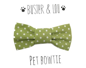 Slide on Cat or Small Dog Bow Tie - Green Spot
