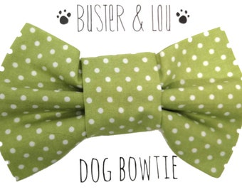 Dog Bow Tie - green and white spot