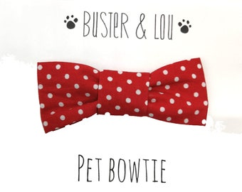 Cat / Small Dog Bow Tie - Red Spot