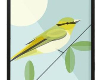 Wood Warbler bird print