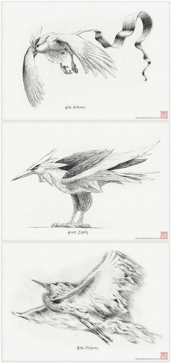Articuno Zapdos y Moltres trío de Pokémon pájaro legendario | Etsy