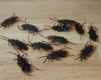 """Realistic Fake Cockroaches, 3"""" (roach found object imitation halloween decoration prank joke scary insect bug creepy gross science plastic"""