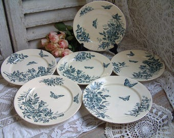Set of 6 Antique french teal transferware dinner plates. Teal transferware. Jasmine. Butterflies. Blue green transferware. Tea plates