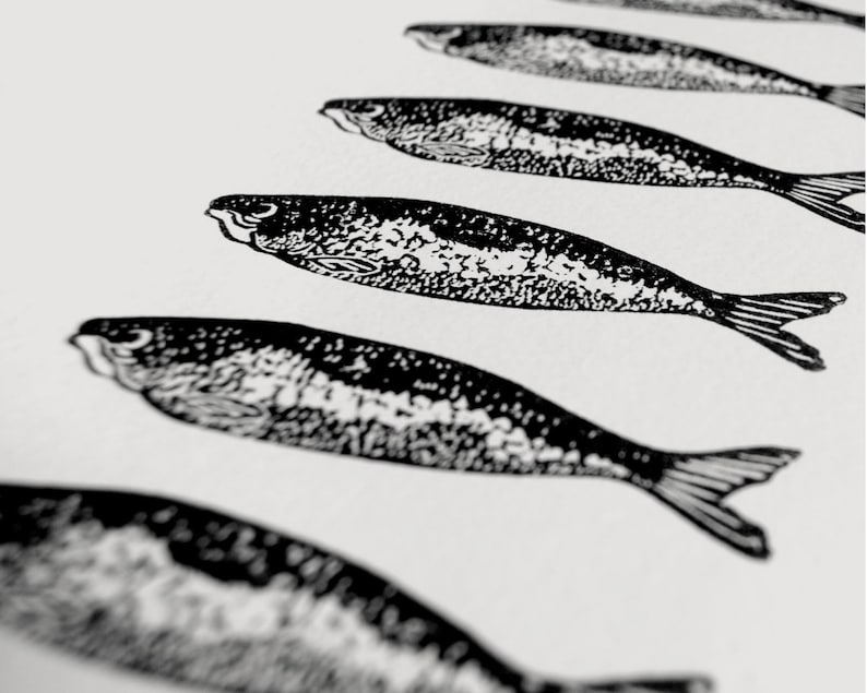 Twelve Sardines art print  fish screenprint gift for cooks image 0