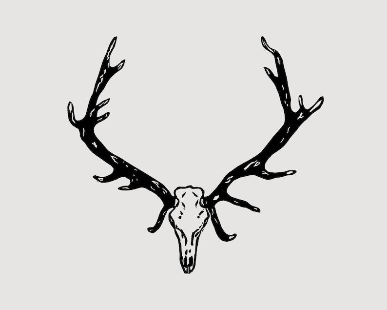 Deer Antlers linocut  skull and antlers taxidermy art deer image 0