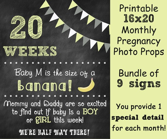 picture about Printable Baby Month Signs called Printable Being pregnant Countdown Chalkboard Picture Prop Signal